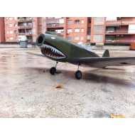 P40 Warhawk .60